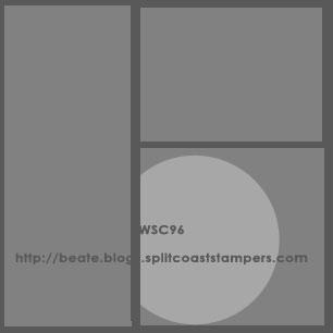 Wsc96
