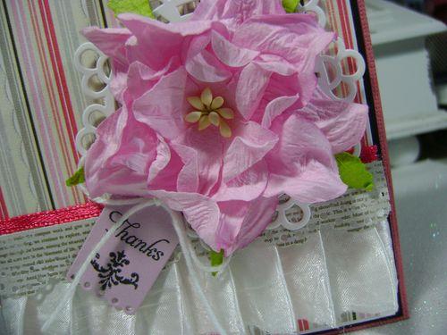 Case Study #71 close up flower