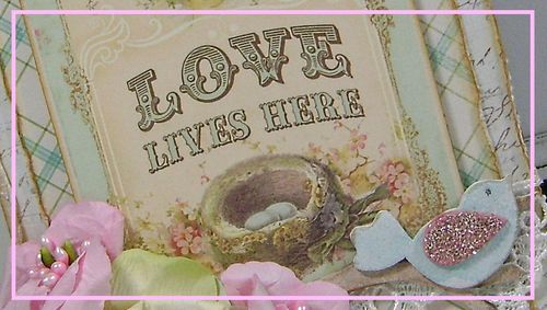 Love Lives Herenarrow