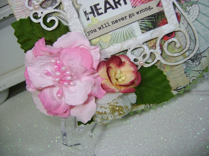 Linda-FreeChoice-Round Cardflower cluster