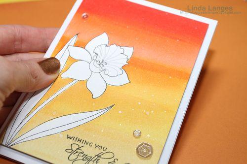 Liquid Masking Daffodil Card CU