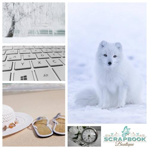 CHALLENGE - WHITE